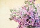 Kwiaty  – szczególny  przypadek prawny