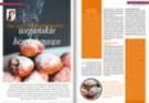 Mistrz Branży na styczeń: pączki poszukiwane, czekolada bean-to-bar, boom na roślinną dietę i opakowania EKO