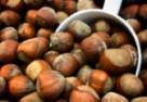 Wanilina z łupin orzechów i czekoladowy upcykling - Barry Callebaut rozpoczyna współpracę z chemicznym startupem